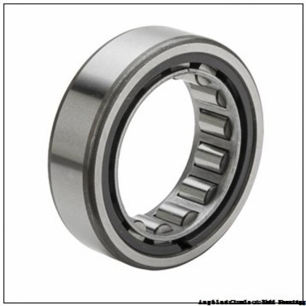 45 mm x 120 mm x 29 mm  FAG NU409-M1  Cylindrical Roller Bearings #2 image